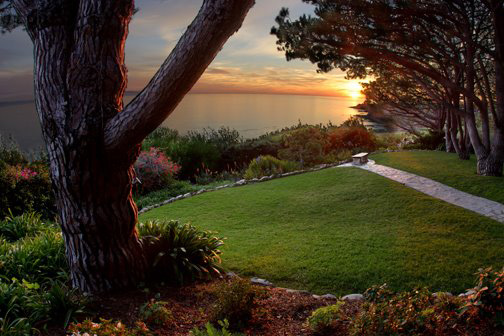 The view from Wayfare Chapel in Palos Verdes