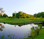 Best Public Golf Courses in St. Petersburg