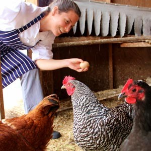 Chef Katherine Stern shows chickens some tender loving care and picks up an egg too. Photo by Chip Scheuer.