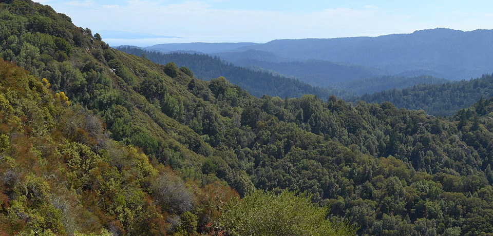 best-hikes-in-santa-cruz