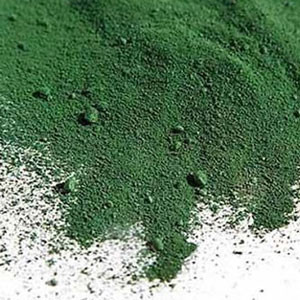Spirulina: pond scum or superfood?
