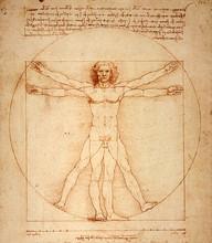 Neoteric Renaissance School of Art logo