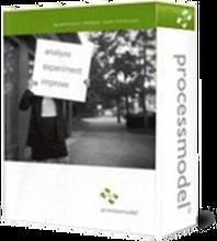 Process Improvement Training - ProcessModel logo