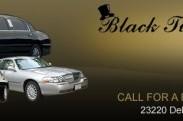 Black Tie Limousine logo