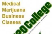 420 College Reviews logo