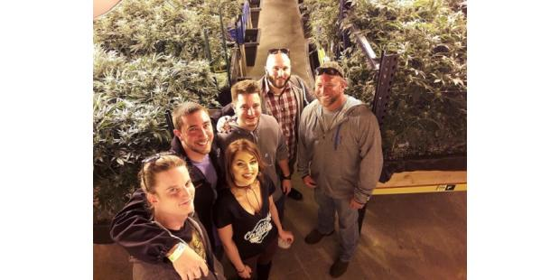 Marijuana Greenhouse & Dispensary Tour