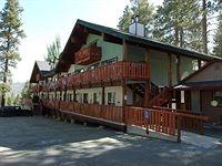 Honey Bear Lodge & Cabins