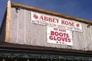 Abbey Rose logo