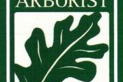 Arbor Doctor logo