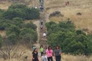 Baldwin Hills Scenic Overlook logo