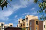 Calypso Apartments And Lofts logo