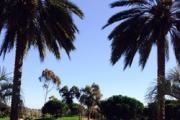 Talega Golf Club logo