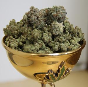 How to Get Medical Marijuana in Los Angeles