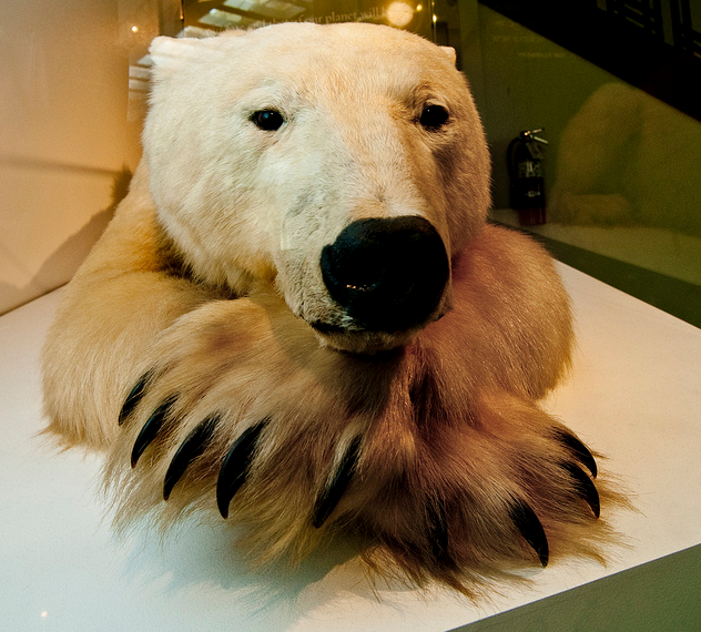 Child Friendly Museums in Los Angeles