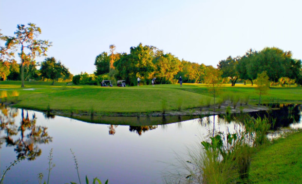 Best Public Golf Courses in St. Petersburg