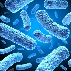 Scientists have been studying E. coli and other bacteria dangerous to humans, but the Human Microbiome is taking a more holistic approach to understanding the trillions of microbes in our bodies.