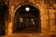 San Antonio City Lights Ghost Tour by Segway