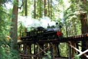Roaring Camp Steam Train Through Santa Cruz Redwoods logo